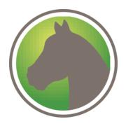 www.newhorse.com