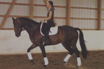 Debbie Morrison Dressage Riding Instructor In Elmer New