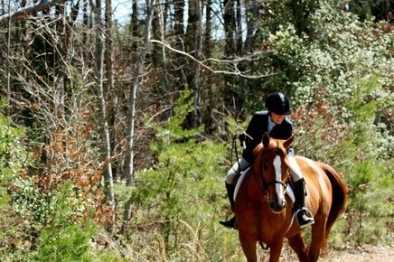 Kendra Porter Blue Ridge Equestrian Farm Riding