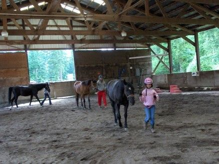 Hollywood Hill Equestrian Center Inc. - Riding Instructor ...
