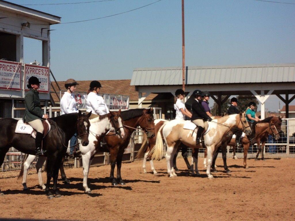 AVRA-Arkansas Valley Riding Academy - Riding Instructor in ...
