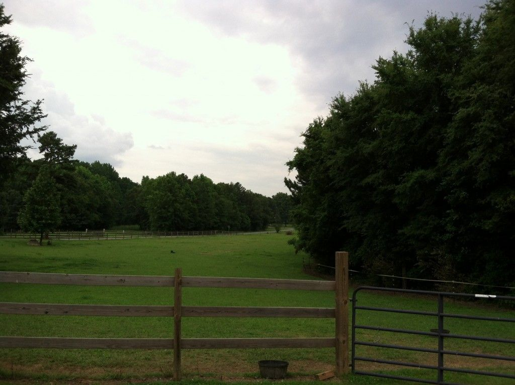 Shade Tree Farm - Horse Boarding Farm in Charlotte, North ...