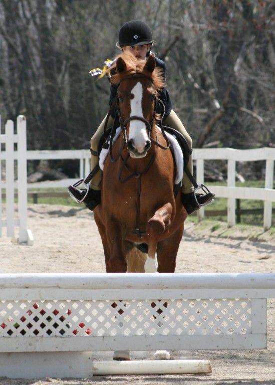 Stillwater Stables Horse Boarding Farm In Bondurant Iowa