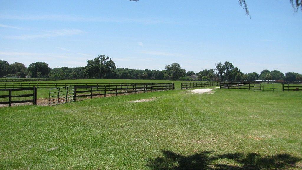 Cornerstone Farm Horse Boarding Farm In Ocala Florida