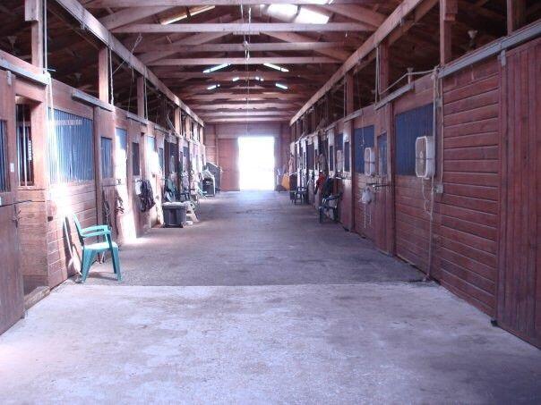 Chestnut Hill Equestrian Center Horse Boarding Farm In