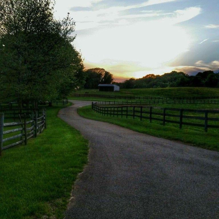 Ashland Equestrian Llc Horse Boarding Farm In Warrenton