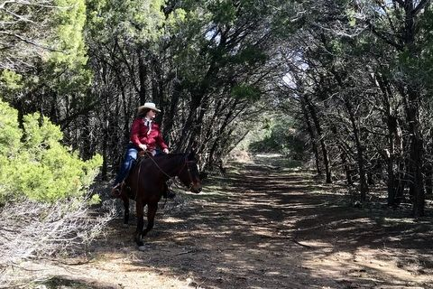 Horse Boarding in Georgetown, Texas (Williamson County)
