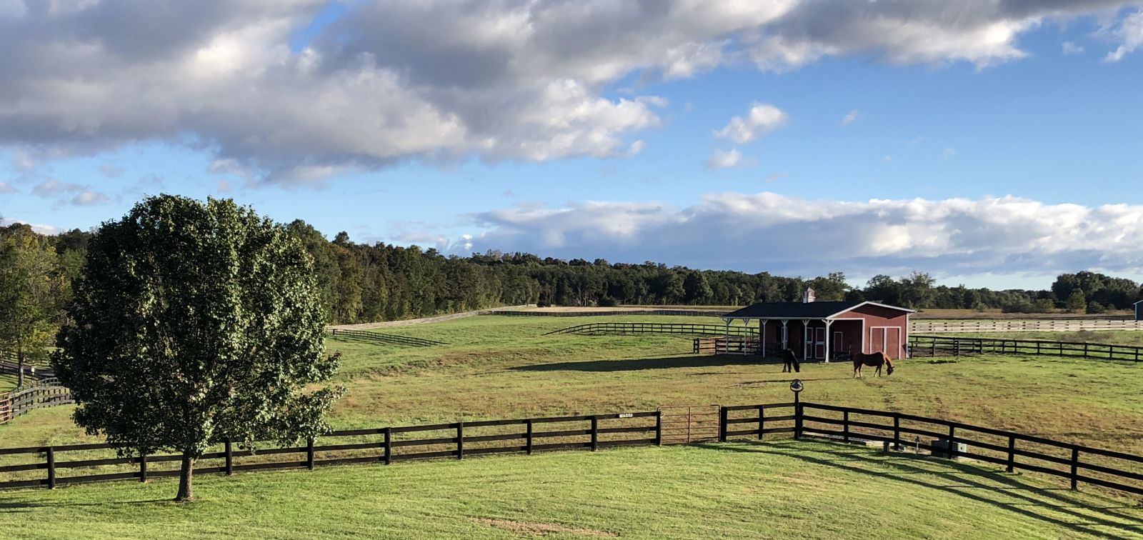 Horse Boarding In Warrenton Virginia Fauquier County