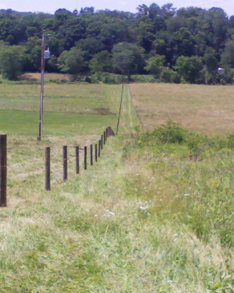 Rmg Fence Horse Fence Builder In Lancaster Ohio