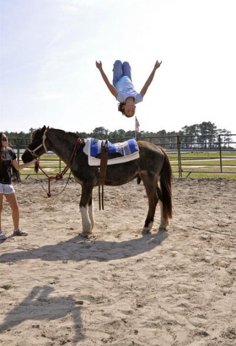 Horse Camps In Virginia Beach