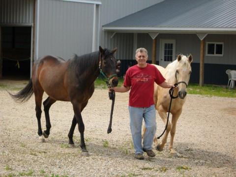 Prince Rock Ranch Horse Boarding Farm In Wadsworth Illinois