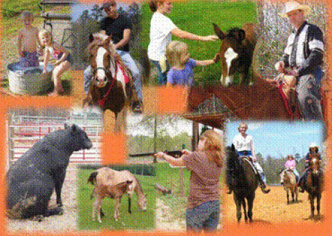 Bar J Ranch Riding Instructor In El Dorado Arkansas