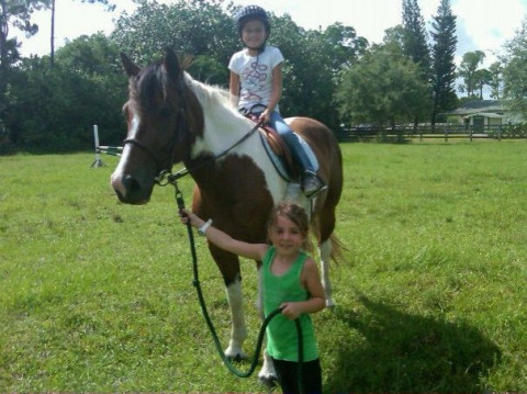 Horse Camps in Wellington, Florida (Palm Beach County)