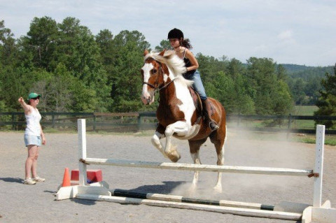 Horse Camps in Lawrenceville, Georgia (Gwinnett County)