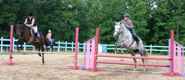 Equine Kingdom Riding Academy Riding Instructor In