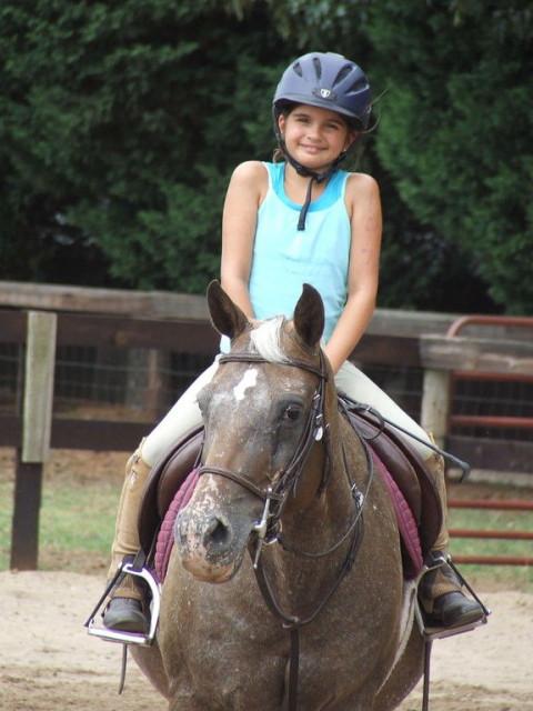 Horseback Riding In Cary North Carolina Wake County