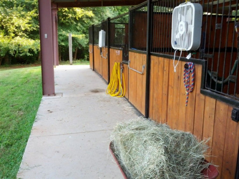 Horse Boarding In Columbus Georgia Muscogee County