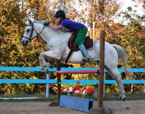 Equine Kingdom Riding Academy Summer Camp Horse Camp In