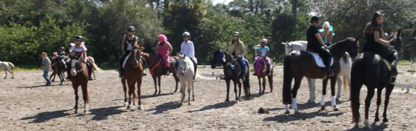 Fantasy Farms Equestrian Center Horse Boarding Farm In