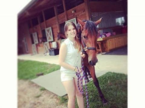 Desert Rose Ranch Equestrian Center Horse Boarding