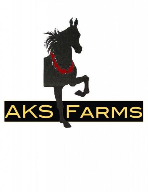 Aks Farms Llc Riding Instructor In Norwalk Iowa