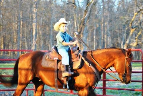 Horseback Riding in Lafayette, Louisiana (Lafayette County)