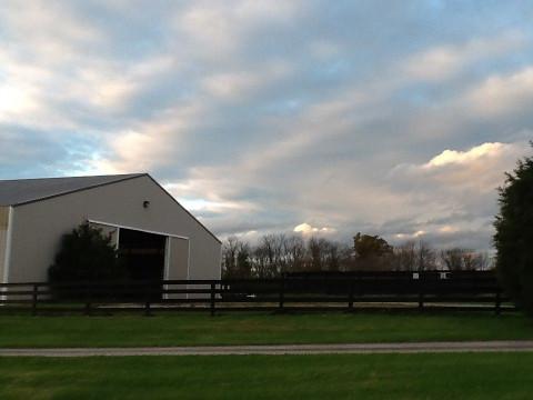 Horse Boarding In Louisville Kentucky Jefferson County