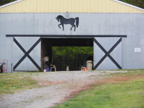 Spring Lake Farms Horse Boarding Farm In Covington Georgia