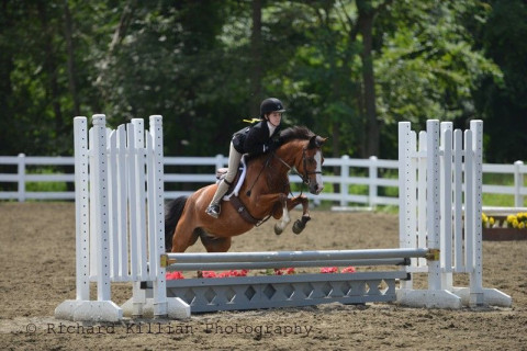Horseback Riding Lessons In Newtown Ct Riding Instructors