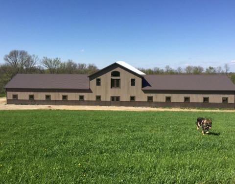 Horse Boarding In Burlington Kentucky Boone County