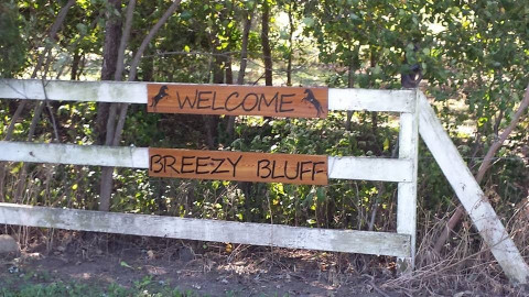 Breezy Bluff Riding Academy - Riding Instructor in Mc Lean