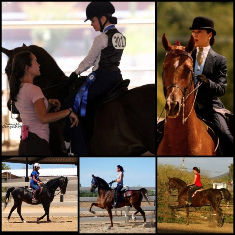 Horseback Riding In Corpus Christi Texas Nueces County