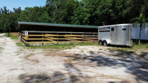 5ACRE FARM - Horse Boarding Farm in Davie, Florida