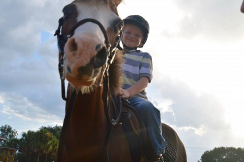 Oakmore Equestrian Center Horse Boarding Farm In Apopka