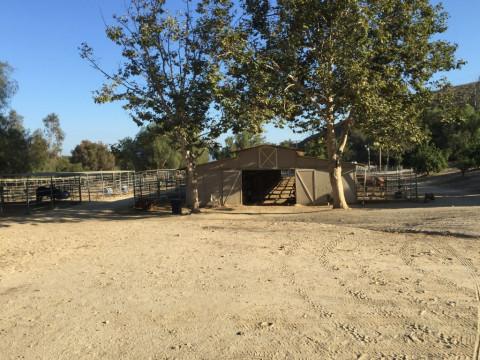 Horse Boarding in Frazier Park, California