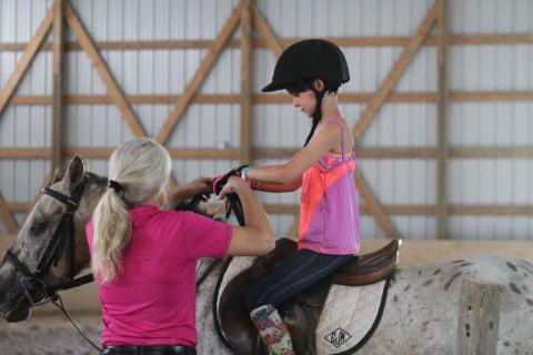 Horse Boarding in Waukesha, Wisconsin (Waukesha County)