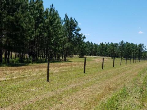 Horse Fence Installers In Milton Florida Santa Rosa County