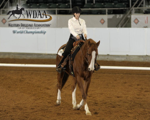 Western Horse Training in Indiana