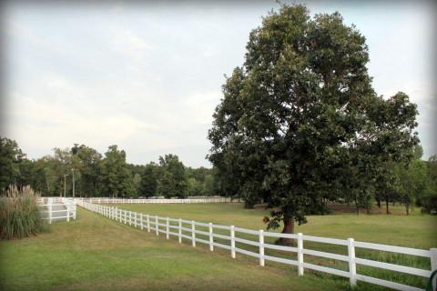 Hidden Ponds Equestrian Center Horse Boarding Farm In