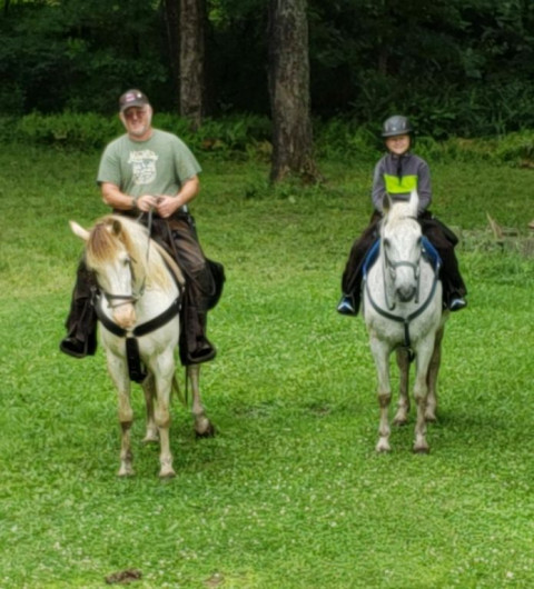 Horse Boarding In Red Lion Pennsylvania York County