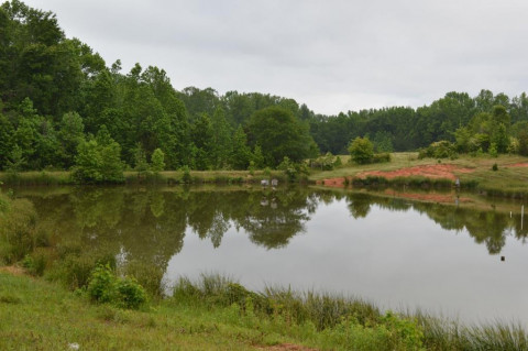 Horse Farms for Sale or Lease in Pendleton, South Carolina