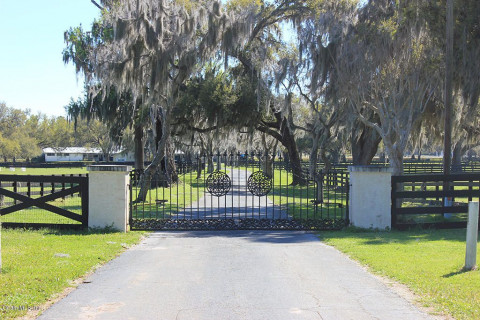 Horse Farms for Sale or Lease in Ocala, Florida (Marion County)