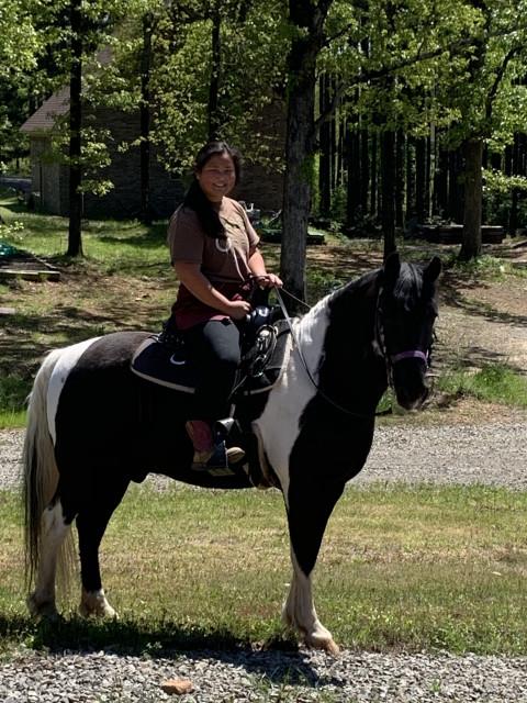 horseback riding in russellville arkansas pope county russellville arkansas pope county